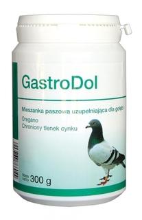 Dolfos GastroDol DG 300g