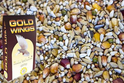 GOLD WINGS Karma ORDP-19 OPTIMA - CAŁA PALETA 60 worków