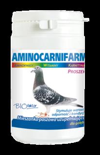 BIOFACTOR AMINOCARNIFARM 200g