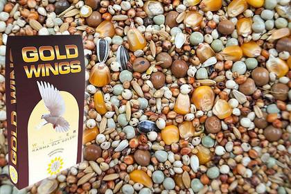 GOLD WINGS DM - dla młodych 20 kg