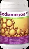 HAPLABS Saccharomyces ++ 700g