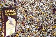 GOLD WINGS SW -super wdowce 20