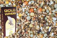 GOLD WINGS  LJ - Lotowa Junior 25