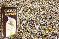 GOLD WINGS  BM - bezstrączkowe młode 20